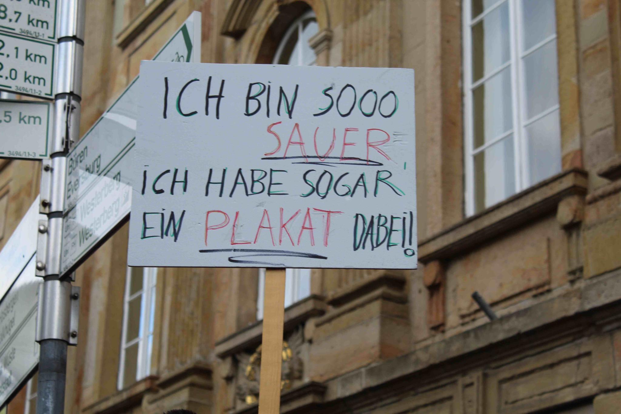 Sauer-Schild